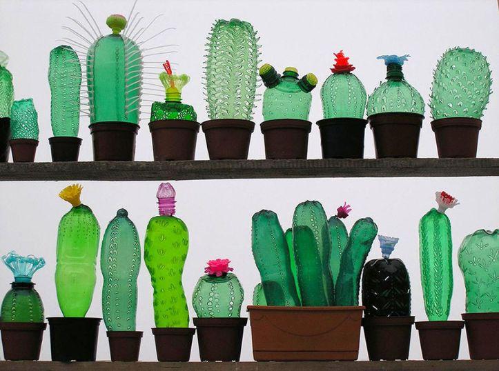 plastic cactussen