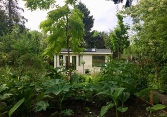 Het huisje nu, niet meer donkergroen zoals op de foto hierboven maar bloesemwit. Ook wolkers had zijn huisje na een tijdje wit geschilderd.