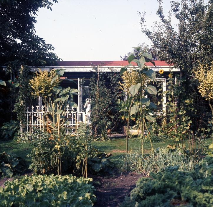 Tuin1973_zomer (2)
